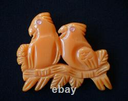 Vintage Bakelite Parrots Brooch Pin Darling! Butterscotch